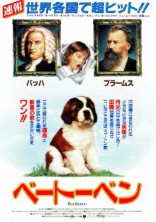 animal-shuyaku3