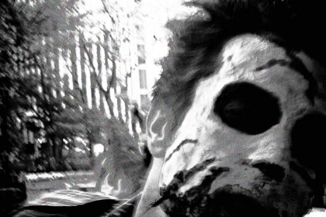 zombie-hen